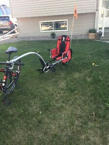 Weehoo Bike Trailer