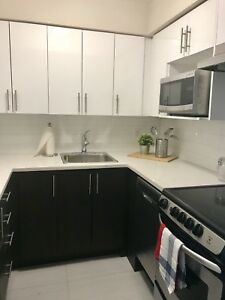 Newly Renovated Unit Downtown Montreal!