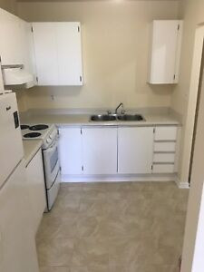 3 bedroom apartment in St. Catharines. $1200 all inclusive .