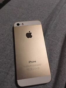 iPhone 5s gold 16gb rogers 175 obo