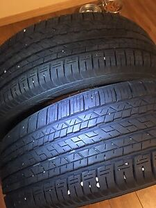 2x 195 55 R16 Dunlop All season Tires