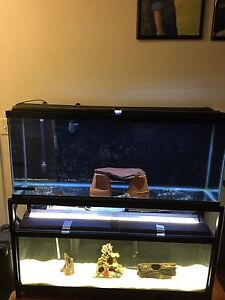 Selling Double Stacked Aquarium  55gallon and 40Gallon long