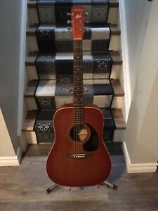 Acoustic guitar art & lutherie