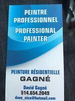 Peintre professionel / Professional painter