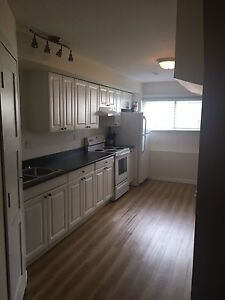 Bright one bedroom basement suite( single occupant only)