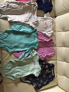 22 piece 12-18month baby girl lot