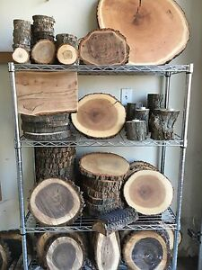 Wood Rounds - Candle Stands - Wooden Card Holder
