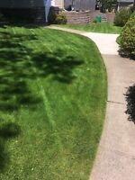 Commercial Lawn Care and Property Maintenance