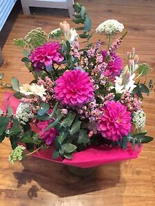 Garden flowers and gift store Maylands Bayswater Area Preview