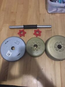 Dumbbell + Weights