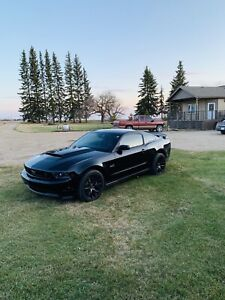 Mustang Owner | Kijiji in Alberta  - Buy, Sell & Save with