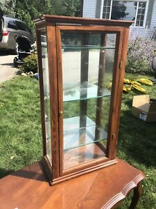 Dark Wood Glass Display Cabinet with Mirror Back