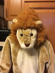 Childs Lion Outfit
