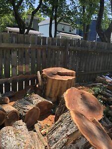 Firewood , wood