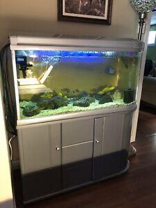 Aquarium toute équipé, 4 pieds