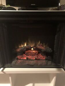 Electric Fireplace Insert $100 OBO
