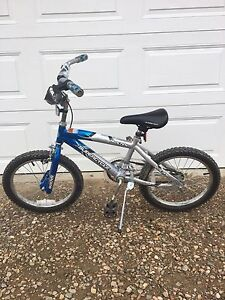 """Super Cycle Kids Bike with 18"""" Tires"""