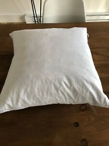 New 20x20 down pillow inserts