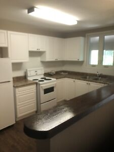 Stoney Creek 2 bedroom apartment