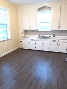 Large, newly renovated 3 Bedroom - heat inclu