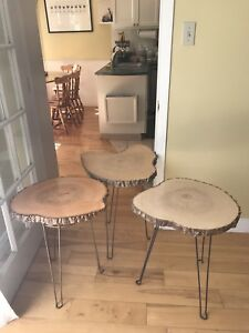 Three tree trunk slice end tables