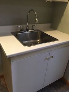 Laundry Cabinets with Wash Sink Vanity