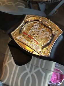 Wwe spin belt needs battery covers