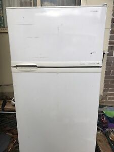 Huge fridge Hoover contour Hornsby Hornsby Area Preview