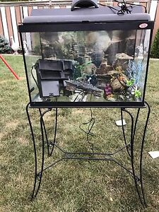Aquarium and stand with extra decor for fishes  20 Gallon