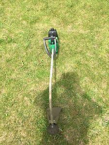 Gas weed eater and electric blower
