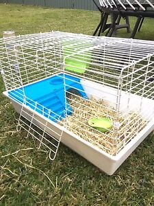 Guinea pig or rabbit cage Boolaroo Lake Macquarie Area Preview