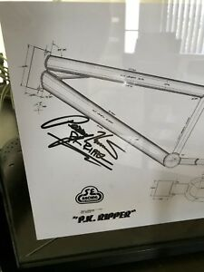 PK RIPPER bmx signed by Perry.