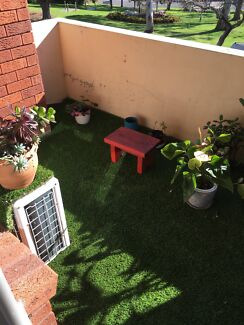 Astroturf / artificial turf in perfect condition $100!