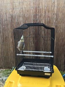 Bird cage Butler Wanneroo Area Preview