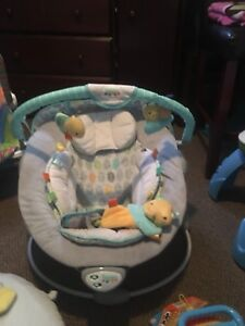 Taggies soft n snug bouncer (music and vibrates)