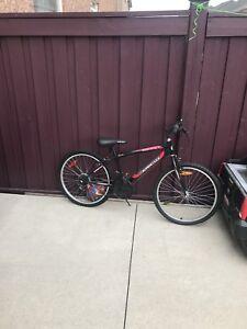 Bike & kids jeep