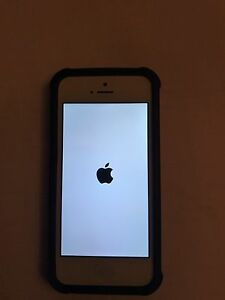 16GB iPhone 5 in Excellent Condition