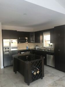 Kitchen cabinet, stove for sale