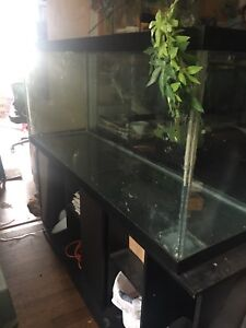 5 foot aquarium CHEAP WITH STAND