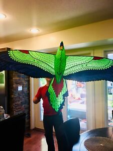"Soaring 3D 84"" Parrot Kite- Reduced $15!"
