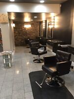 Salon Chairs for Rent