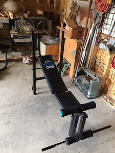Weight bench with weights and handkes