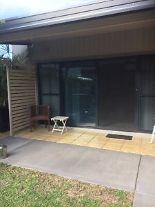 Studio (granny flat self-contained available