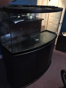 76 gallon bowfront aquarium with stand, light and filter