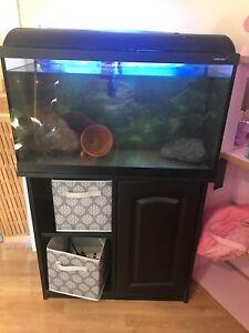 35g Fish Tank