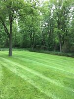 Landscaper for Hire (hourly)