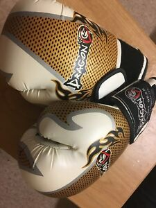 Boxing gloves - great condition barely used