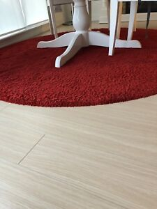 Red circle area rug