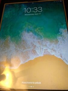 IPad Air 2 16gbs with WiFi and  Cellular unlocked