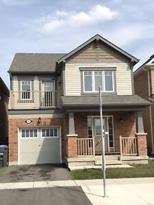 House for rent in Brampton or lease